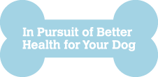 In Pursuit of Better Health for your Dog